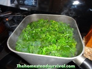 blanch 300x225 How To Freeze Kale