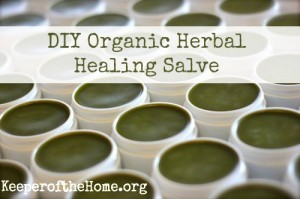 diy organic herbal healing salve Homemade Organic Herbal Salve Recipe
