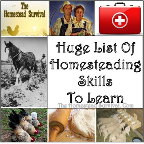 homesteading 500x500 1 Huge List of Homesteading Skills to Learn