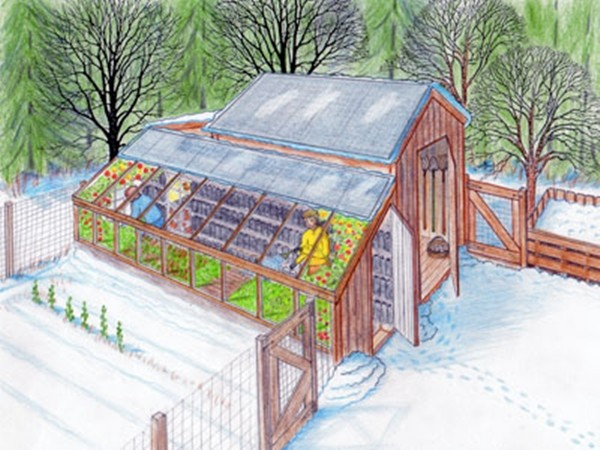 Do It Yourself Home Design: DIY Greenhouse And Chicken Coop Plans