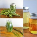 Homemade Evergreen Frugal Cleaning Vinegar Recipe