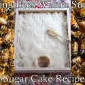 Starving Bees Winter Survival Sugar Cake Recipe