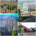 Build a Grand Scale Homesteading Greenhouse Project