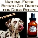 Natural Fresh Breath Gel Drops for Dogs Recipe