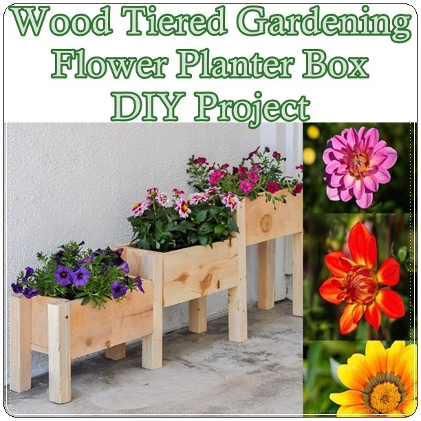 Flower Planter Designs Free Flowers Healthy