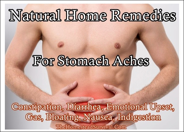 Natural Home Remedies For Stomach Aches - The Homestead Survival