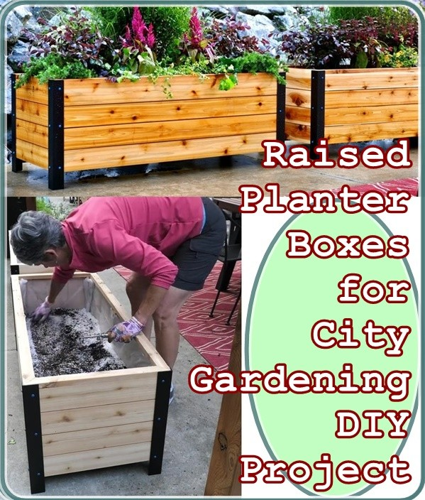 Raised Planter Boxes For City Gardening Diy Project The