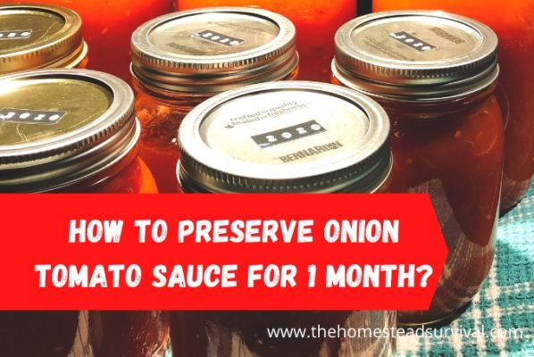 How to Preserve Onion Tomato Sauce For 1 month/week?